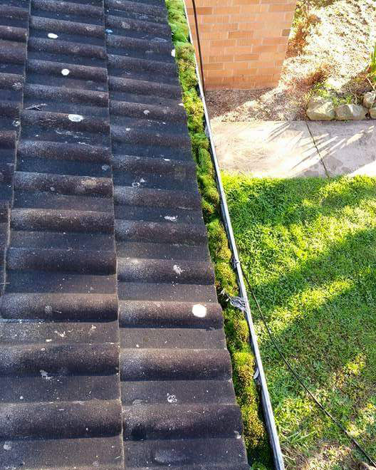 OzPix Discount Roofing Sydney Gutter And Roof Restoration